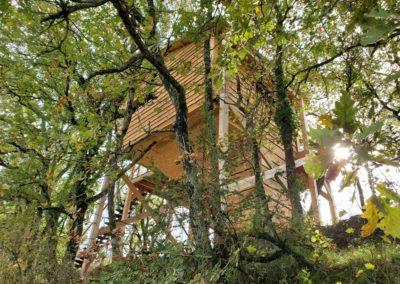 cabane-arbre-ophrys