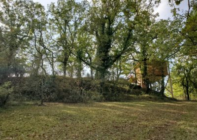 cabane-arbre-orchis